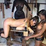 shemale pillory